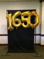 The backdrop for photos at #1650at50